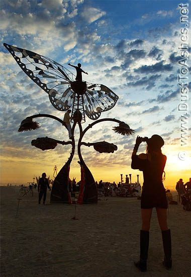 buttrfly wings metal art