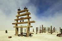 Masonry art installation at Burning Man