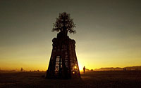 Burning Man metal laser cut tree installation