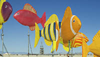 Colorful fish art sculpture at Burning man festival