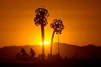 Dandelion art installation on Playa