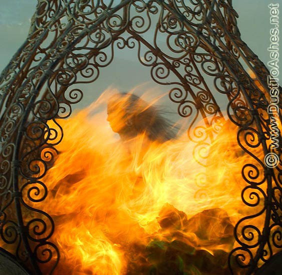 Chrimson Rose Burning Man
