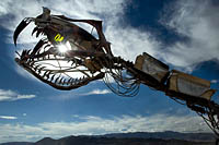 Snake sculpture made of steel