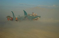 Shark disappearing in desert dust storm