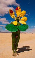Daisy painted people patriot at Burning Man festival