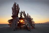 Root like wood installation