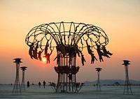 Ape Carousel