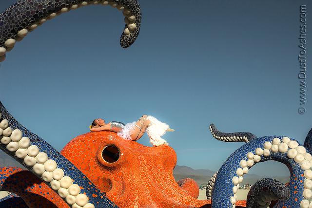 e.g. Octopus