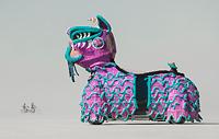 Oversized dog art vehicle