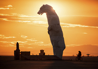 Silhouette of polar bear in desert